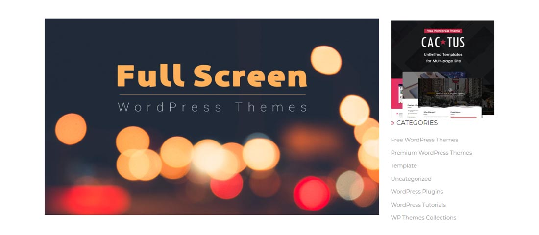 full screen wordpress themes