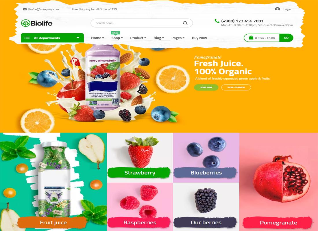 BioLife WordPress Flat Design Theme