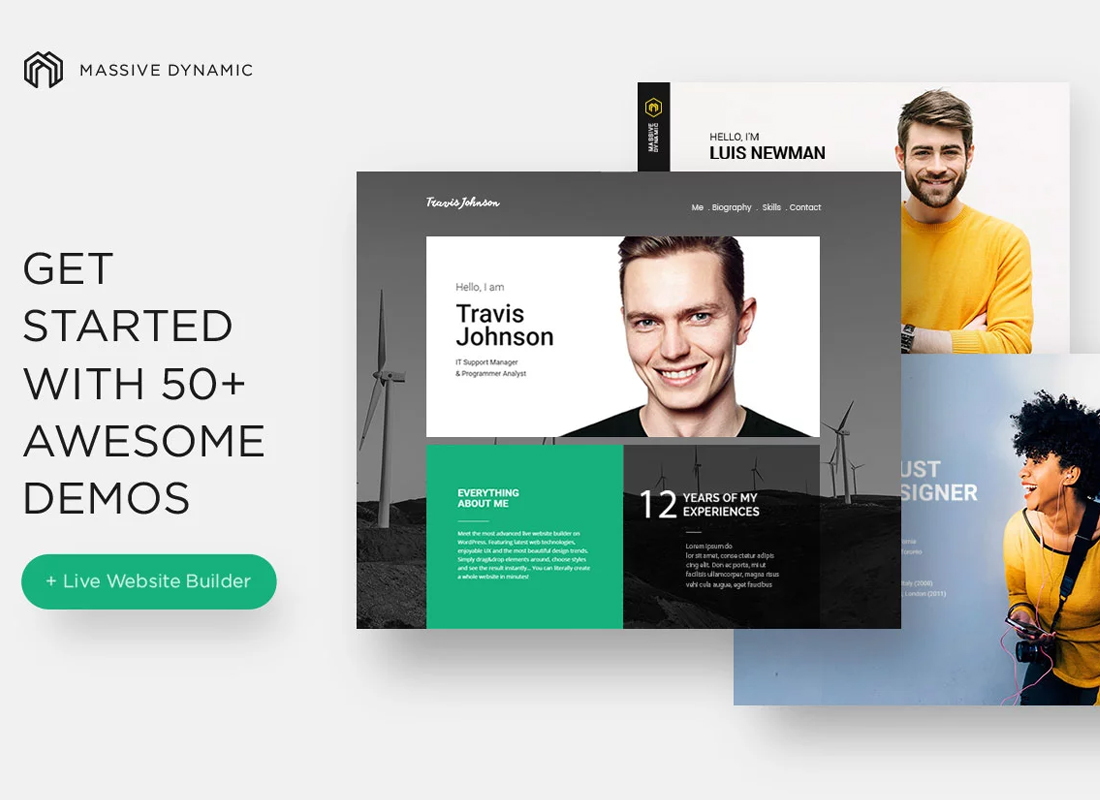 Massive Dynamic WordPress Theme