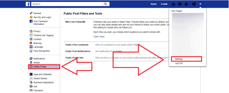 facebook public post option